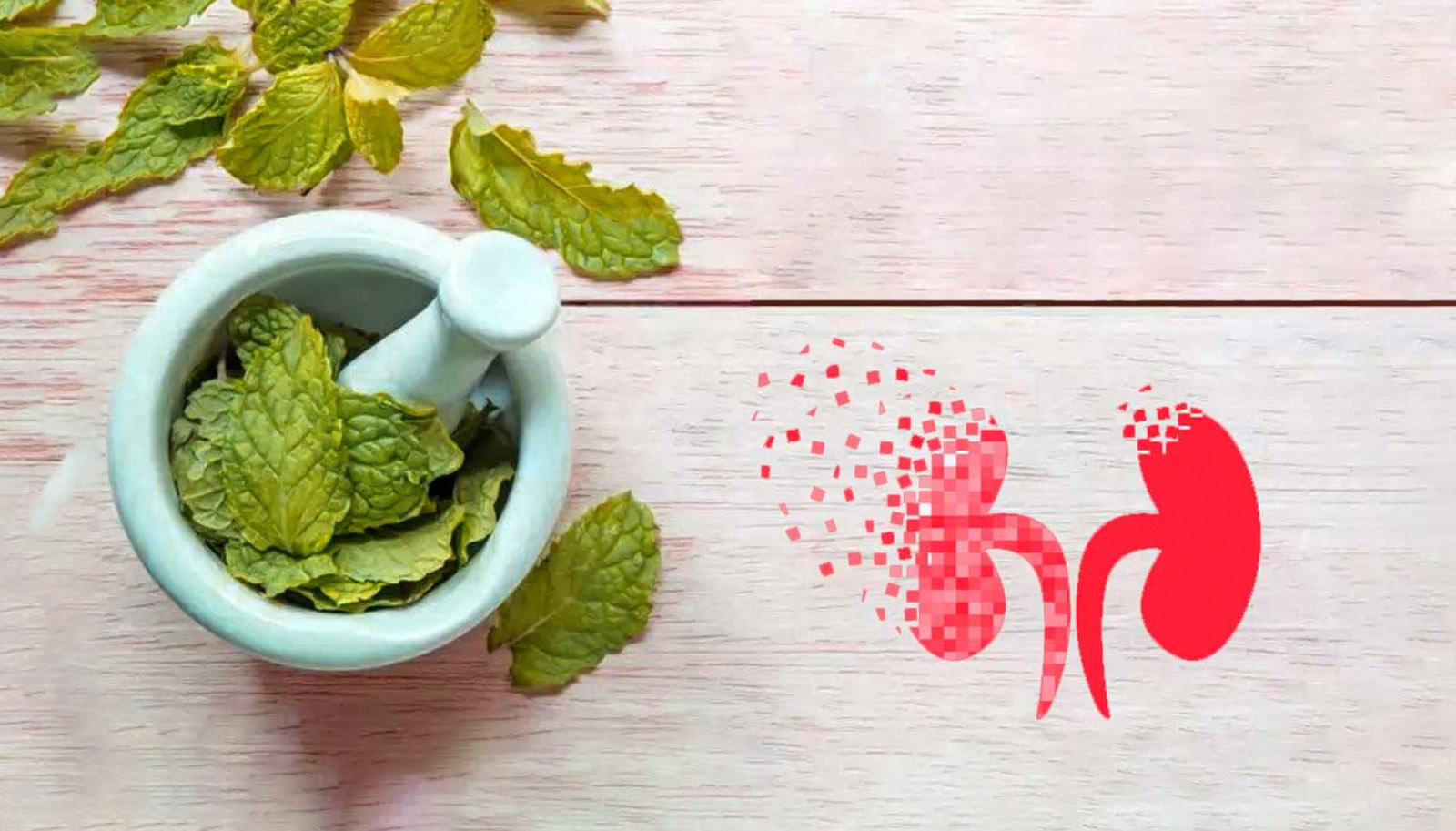 What is the Ayurvedic treatment for Kidney failure?